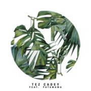 Tải bài hát Ivory (Single) Mp3 miễn phí