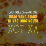 Tải bài hát Mp3 Liên Khúc Nhạc Trữ Tình, Nhạc Vàng Remix Đi Vào Lòng Người - Xót Xa online