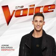 Download nhạc Mp3 Despacito (The Voice Performance) (Single)