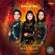 Tải bài hát hay Sắc Hoa Mùa Nhớ - Tình Ca Nguyễn Văn Đông (Thúy Nga CD 599) miễn phí