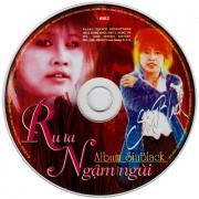 Tải bài hát Mp3 Ru Ta Ngậm Ngùi chất lượng cao