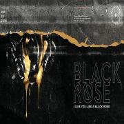 Nghe nhạc hay Black Rose (Single) online