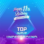 Download nhạc mới Top Indie & Underground_11 Năm NhacCuaTui hay nhất