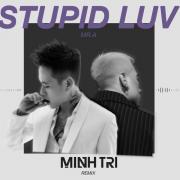 Tải bài hát Mp3 Stupid Luv (DJ Minh Trí Remix) (Single) về điện thoại