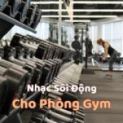 Tải nhạc Mp3 Nhạc Sôi Động Cho Phòng Gym trực tuyến