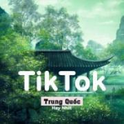 Download nhạc mới Những Bài Hát TikTok Trung Quốc Hay Nhất (Vol. 2) online