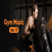 Download nhạc Mp3 Gym Music (Vol. 17) nhanh nhất