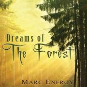 Download nhạc online Dreams Of The Forest về điện thoại
