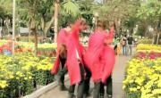 Tải nhạc trực tuyến Liên Khúc Xuân 2011 chất lượng cao