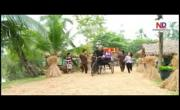 Tải video nhạc Liên khúc Về Quê Cưới Em mới nhất