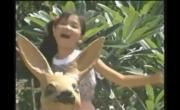 Tải nhạc hình Thành Phố Mười Mùa Hoa trực tuyến