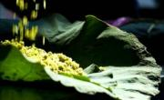 Tải video nhạc sàn Trance Mix - Dance Of Sunlight - DJ Big Head Ha Noi Viet Nam